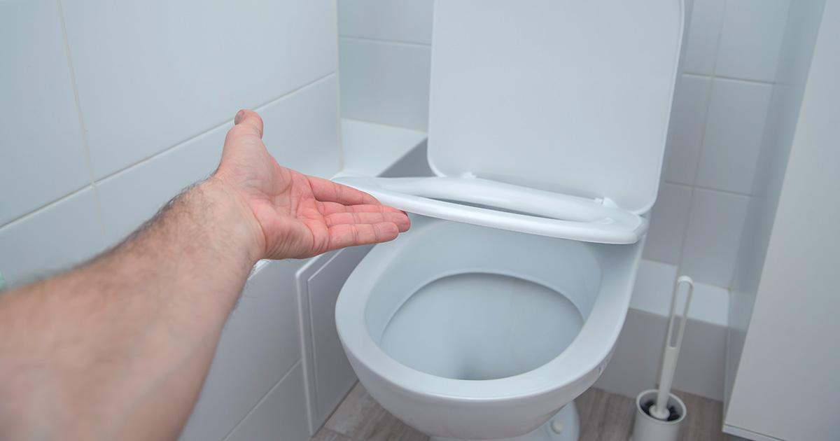toilet, half mast, divorced man