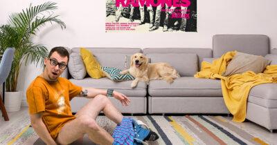 dog, carpet, punk